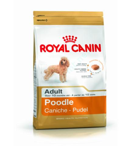 Royal Canin MINI POODLE (USZKÁR) 500g