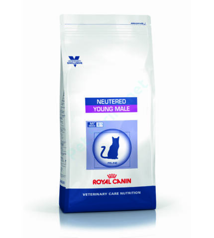 YOUNG MALE S/O    ROYAL CANIN