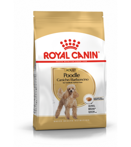 Royal Canin MINI POODLE (USZKÁR) 500g